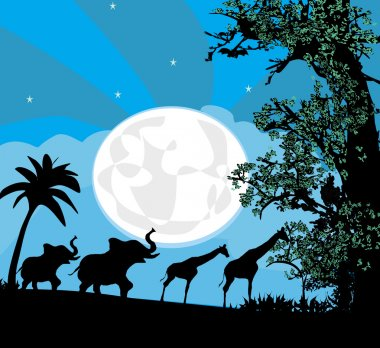 Safari in Africa silhouette of wild animals
