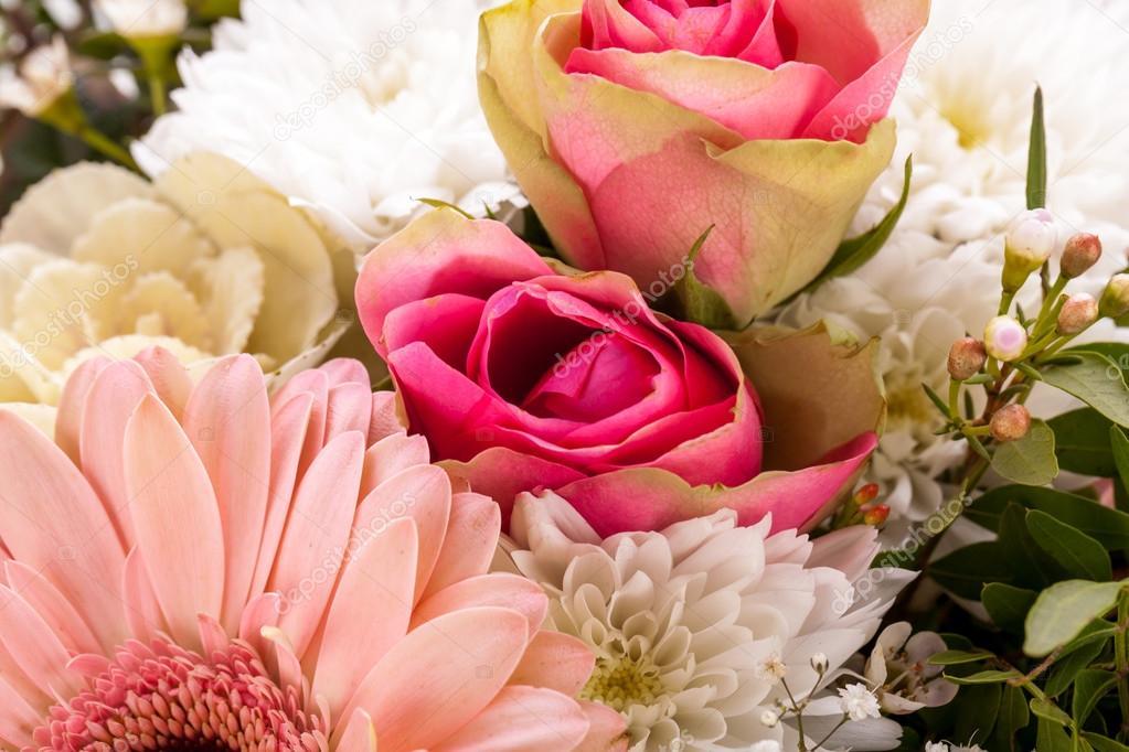frische Rosa und weiße Blumen — Stockfoto © nilswey #37983489