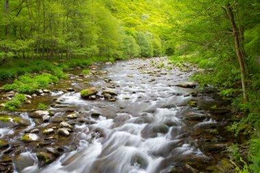 English countryside a River in Devon