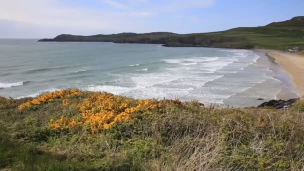 Whitesands Bay beach St Brides Bay West Wales Uk