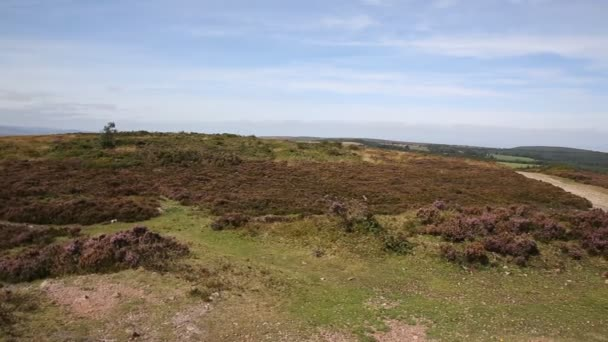 View on top the Quantock Hills Somerset England