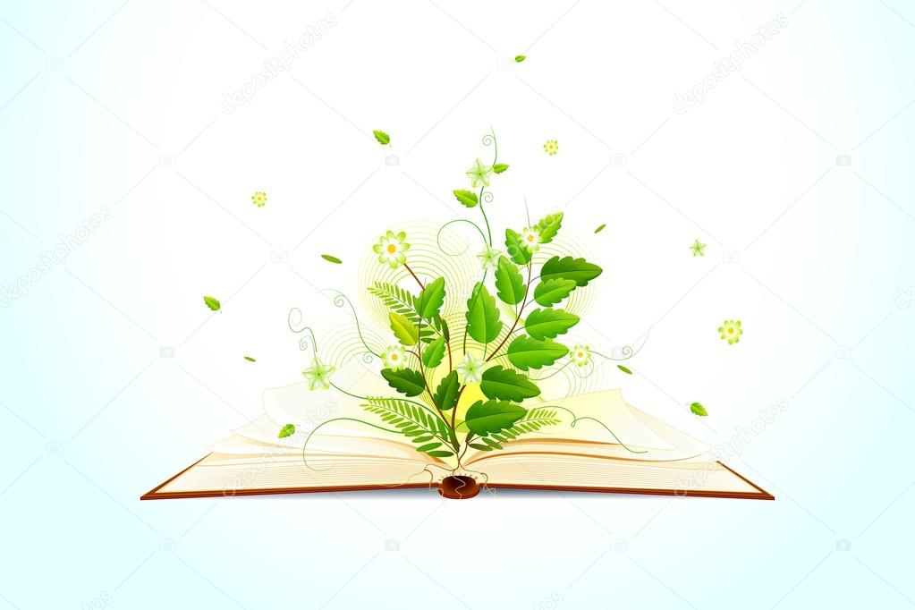 Plant growing on Open Book