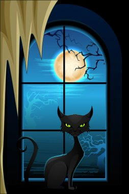 Black Cat in Halloween Night