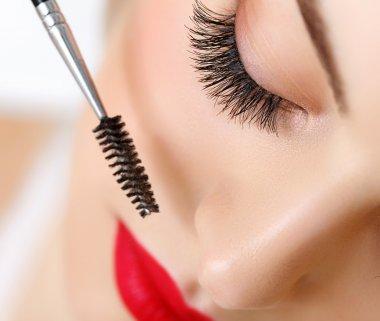 Woman eye with beautiful makeup and long eyelashes. Mascara Brush. High quality image stock vector