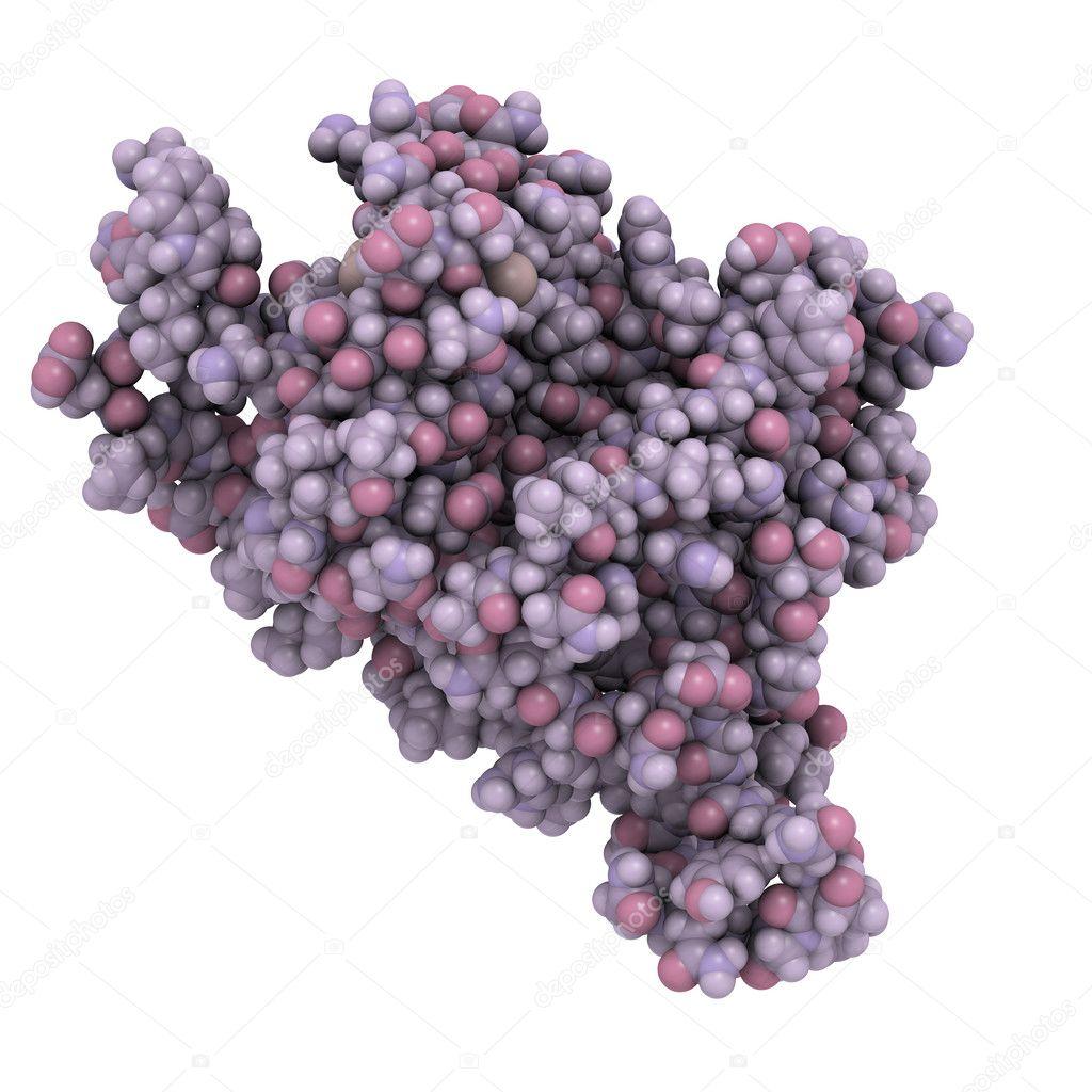 molekuul