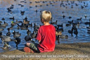 Boy feeding pigeons at the lake
