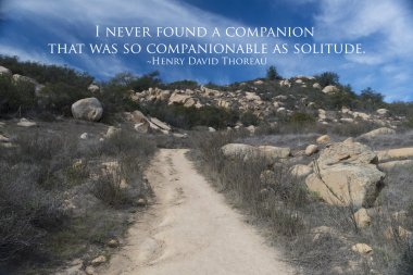 Road in desert with quote