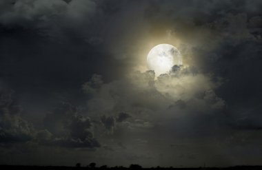 Night sky with the moon