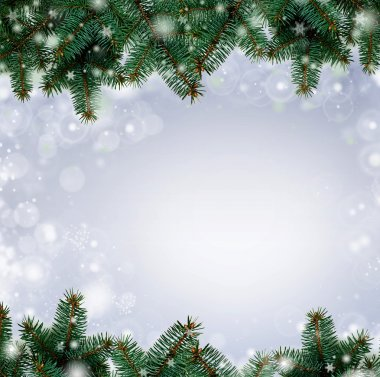 Christmas tree branches border over white background (with sampl