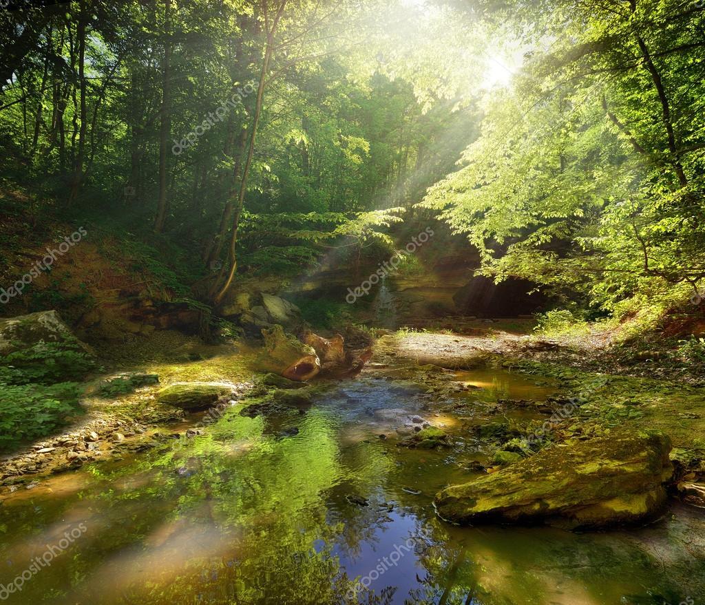 Фотообои Mountain river