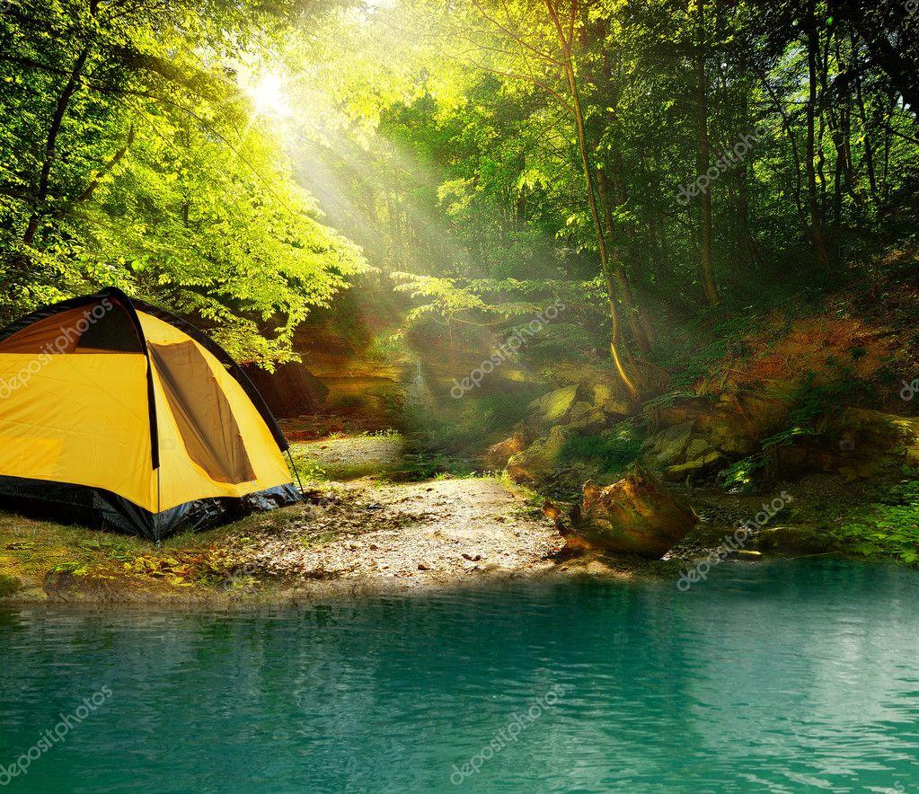Фотообои Tent in the woods