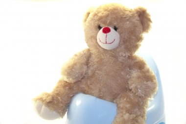 Teddy bear on the potty isolated on white background