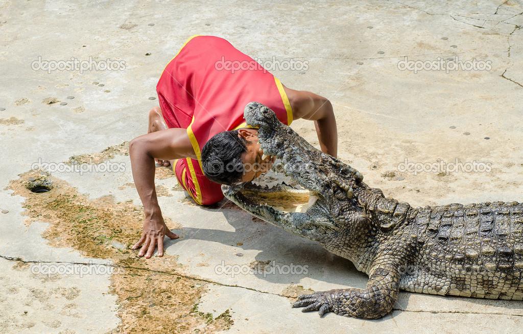 Samutprakarn, Tailandia-octubre 27: cocodrilo Mostrar en fa