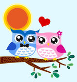 Owls couple in love at tree