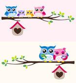 Happy owl rodina