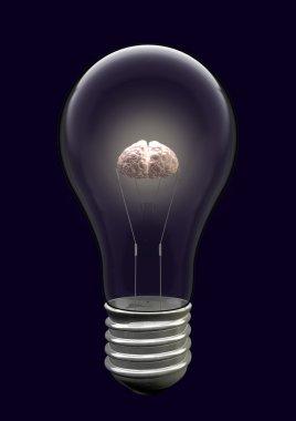 Light Bulb Brain Creative