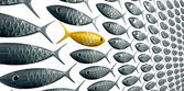 ryby ĺ kola proti pohledu obilí