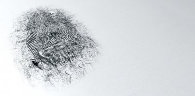 An extreme closeup of a fingerprint thats been dusted with black powder for evidence at a crime scene on an isolated textured white background stock vector