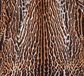 Fotografia texture della pelle di leopardo