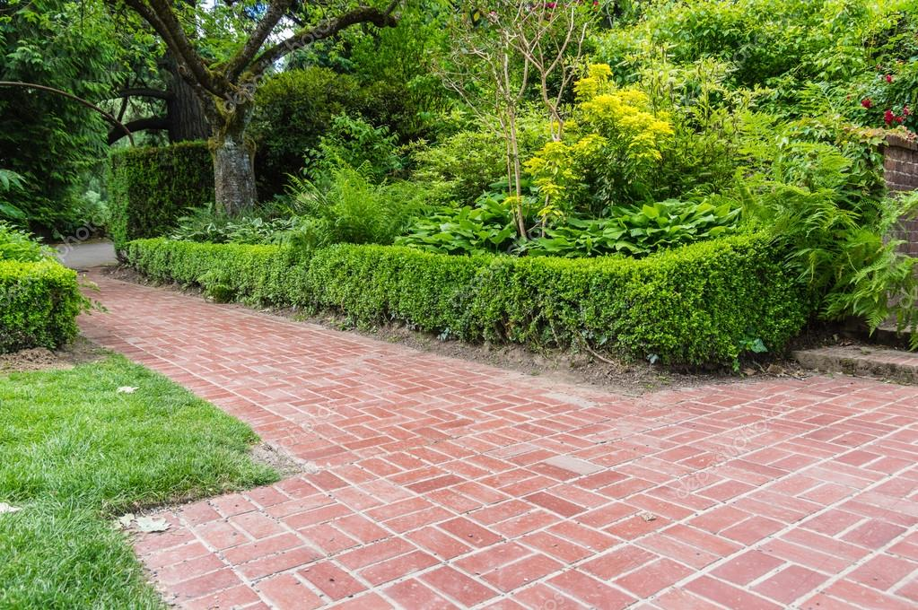 Green hedge and brick pathway in a garden