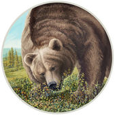 Photo Illustration of a bear