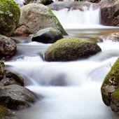 bella insenatura con acqua limpida