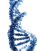 Photo DNA helix vector isolated on white background