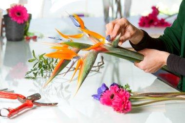 Female hands arranging bouquet.