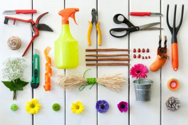 Gardening and florist tools.