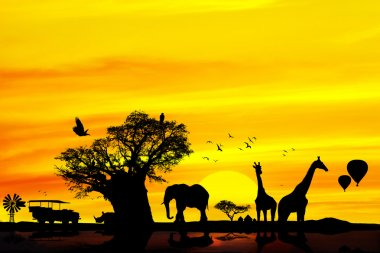 Conceptual african safari backround.