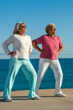 Senior women doing exercise outdoors.