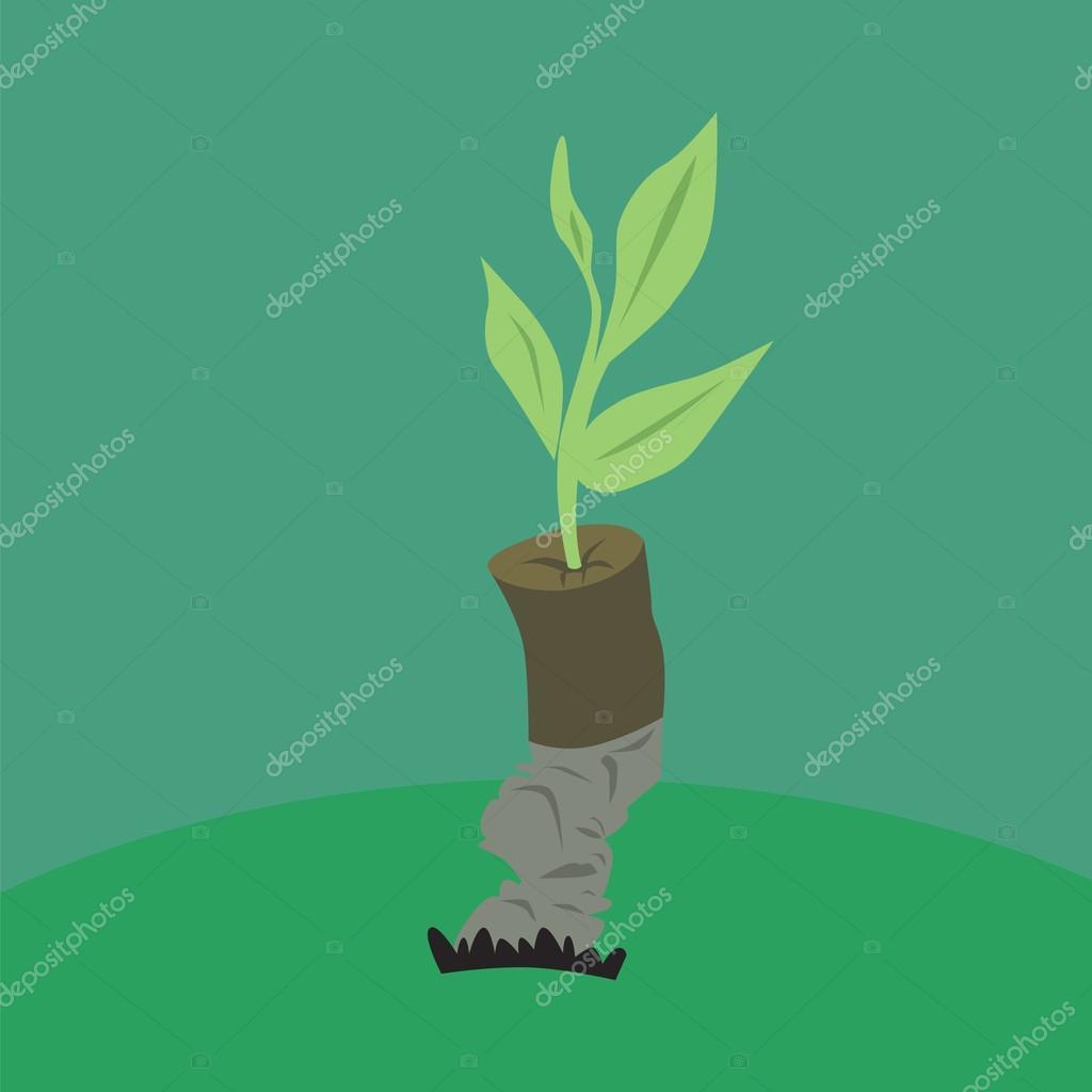 plant and cigarette