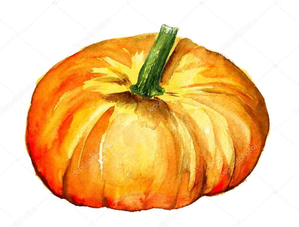 Watercolor pumpkin
