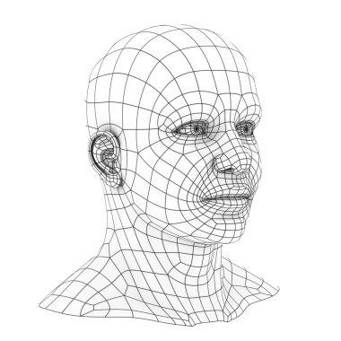 Human head 3d wireframe