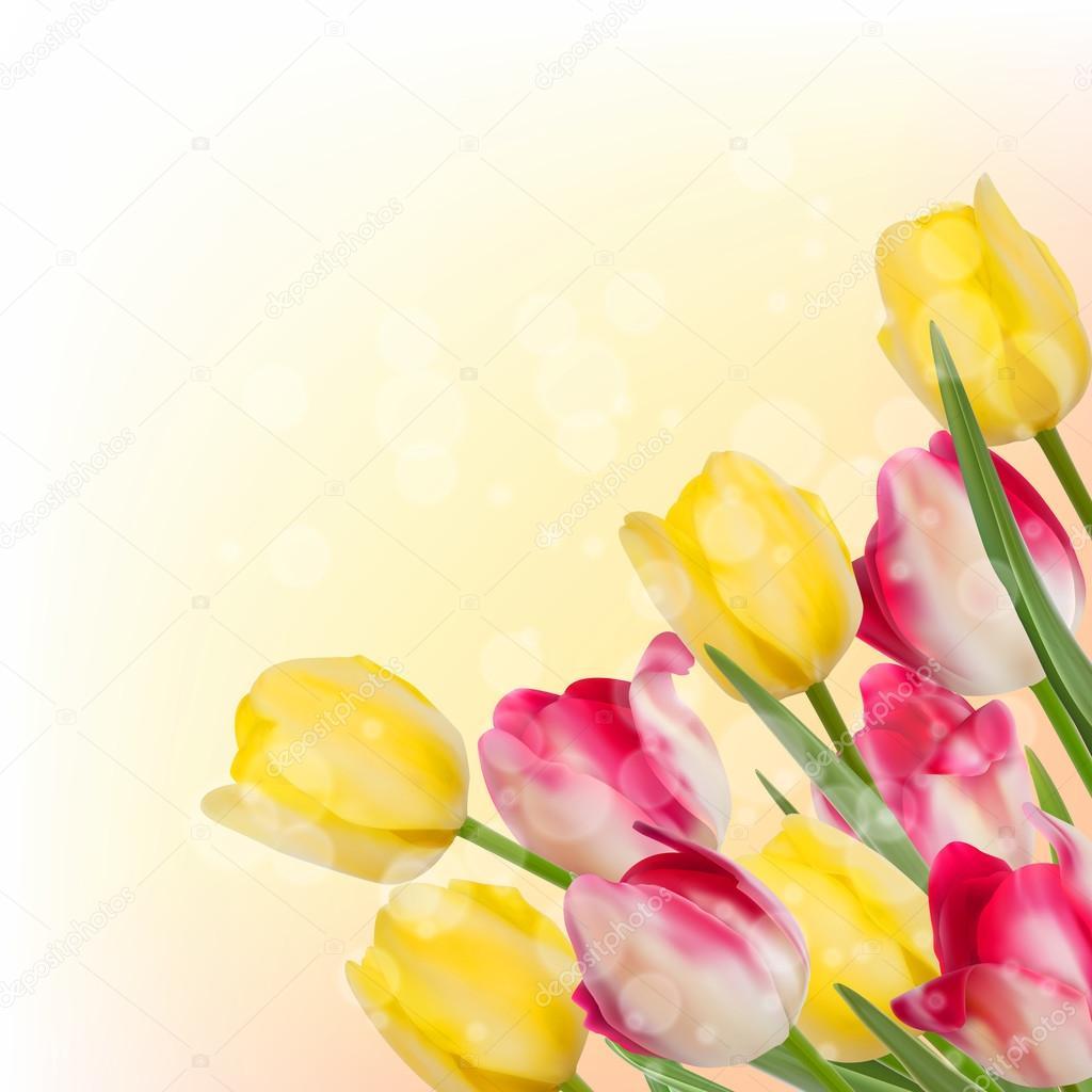 Fresh spring tulip flowers on orange. EPS 10