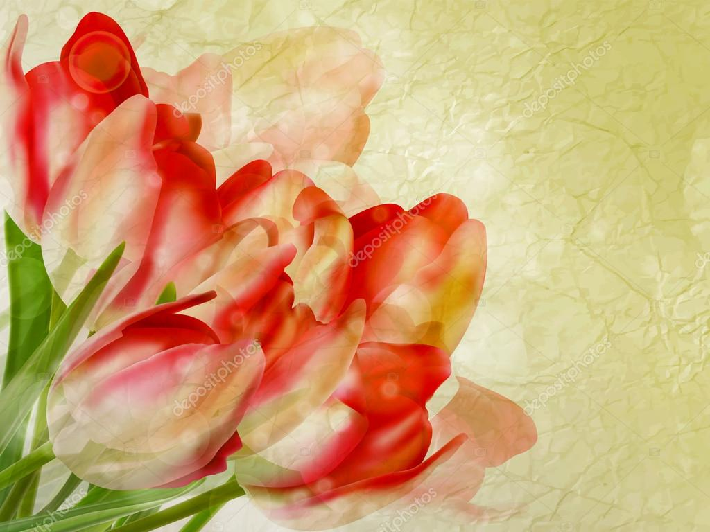 Old paper background with beautiful tulips. EPS 10