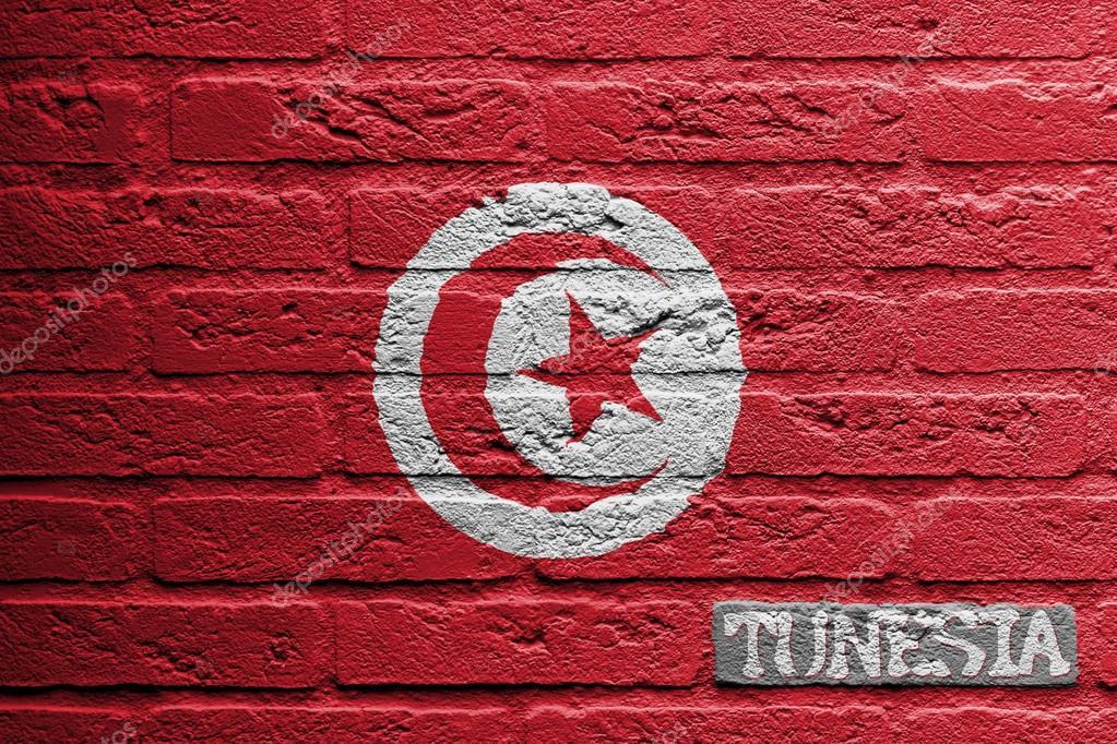 mur de briques avec une peinture dun drapeau tunisie photo
