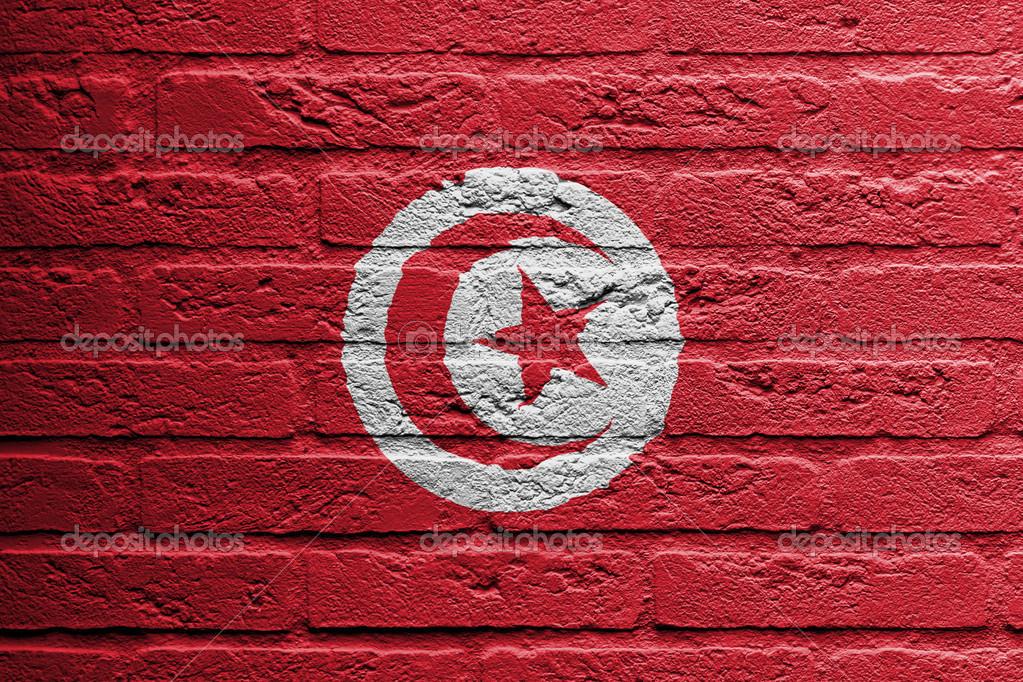 Mur De Briques Avec Une Peinture D'Un Drapeau, Tunisie