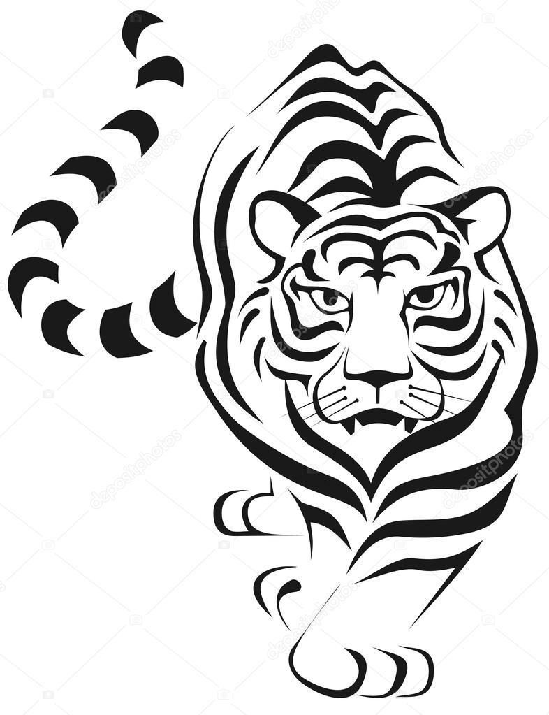 Cara de tigre Imágenes Vectoriales, Ilustraciones Libres de Regalías ...