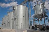 skladování a sušení obilí, pšenice, kukuřice, sója, slunečnice