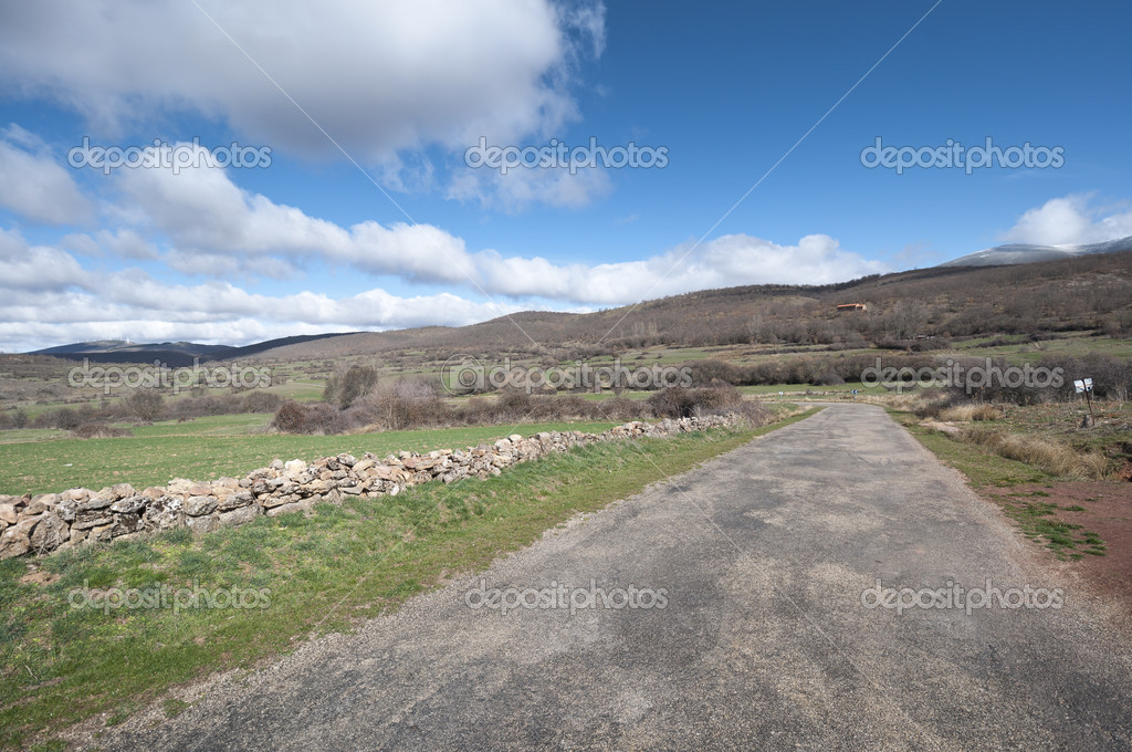 Country road in San Millan de Lara, Burgos Province, Spain
