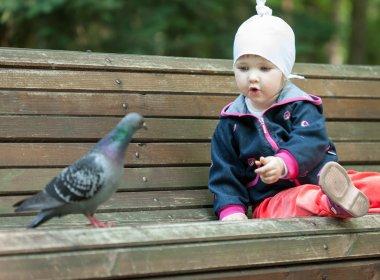 Pretty little girl feeding a pigeon