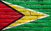 Guayana vlajka maloval na zdi