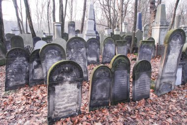 Old graves at historic Jewish cemetery, Okopowa Street in Warsaw, Poland stock vector