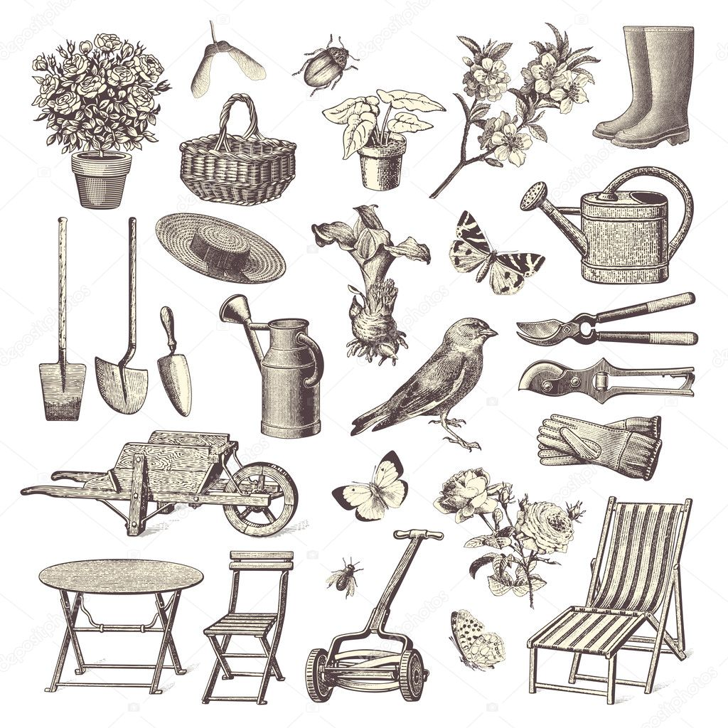 Garden Design Elements vintage garden design elements — stock vector © studio_accanto