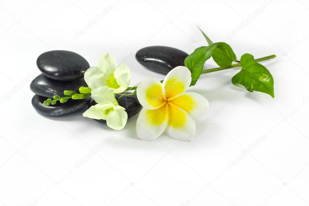 Spa stones and frangipani flowers