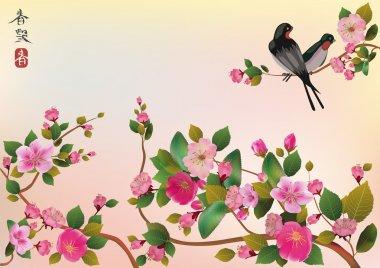 Spring. All wakes up, flowers sakura blossom love swallows. stock vector