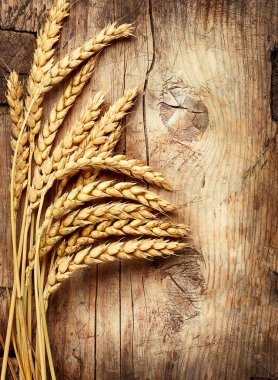 Wheat Ears on the Wood. Wooden Background