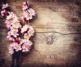 Photo Spring Blossom over wooden background