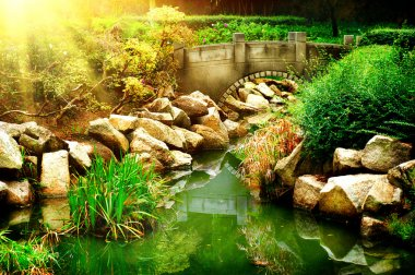Landscaped Garden with Pond.